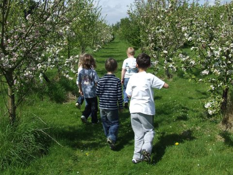 Children at large in the orchard at the Apricot Centre. Photo: Photo: Martin Large / Biodynamic Land Trust.