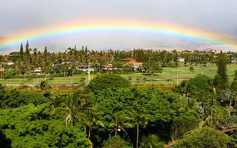 Maui: way too great to ravage with GMOs and associated agrochemicals. Photo: Randy Robertson via Flickr.