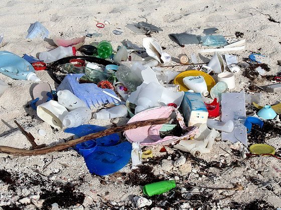 Plastic waste on the 'Mayan Riviera', Quintana Roo, Mexico. Photo: John Schneider via Flickr (CC BY-NC 2.0).
