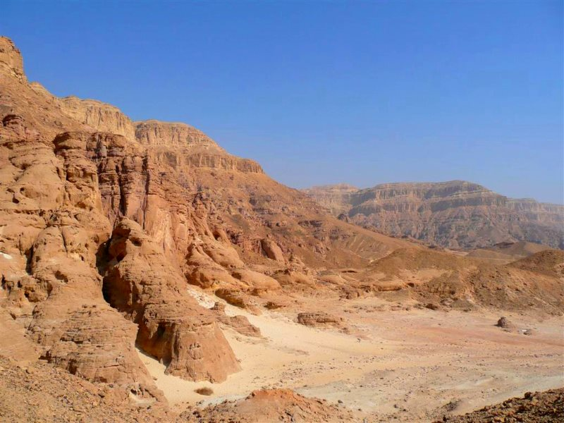 The future Amazon? Keep on deforesting the Amazon, and Leticia in the Colmbian rainforest, which currently gets 2500mm of rain a year, could get as little rain as Israel's Negev Desert, with 20mm. Photo of the Negev by Francois BESSONNET via Flickr (CC BY