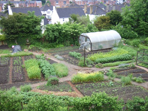 The GREEN research garden in Stroud, Gloucestershire, which generated eight years of research data. Photo: Matt Adams.