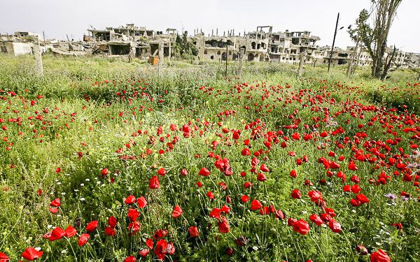 The destroyed Bab Amro neighbourhood of Homs through a blooming field of poppies, 2nd May 2012. Photo: Freedom House via Flickr (CC BY 2.0).