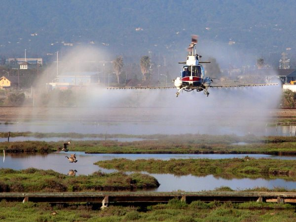 A helicopter of the San Jose Vector Control Agency spraying an unknown pesticide in the Don Edwards National Wildlife Refuge. Photo: Don McCullough via Flickr (CC BY-NC).