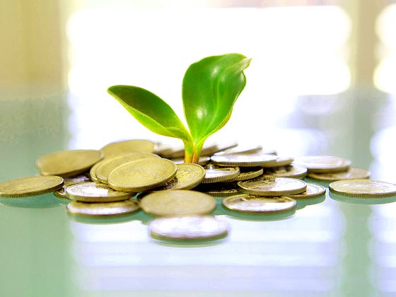 Do trees grow on money? Photo: Tax Credits via Flickr (CC BY).