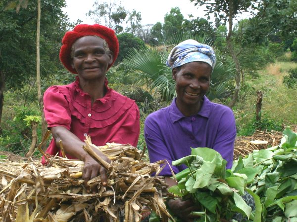 By learning skills like composting, crop diversification, organic pesticide production, seed multiplication and agro-forestry farmers in Malawi are increasing their ability to feed their families over the long term. Photo: Find Your Feet via Flickr (CC BY