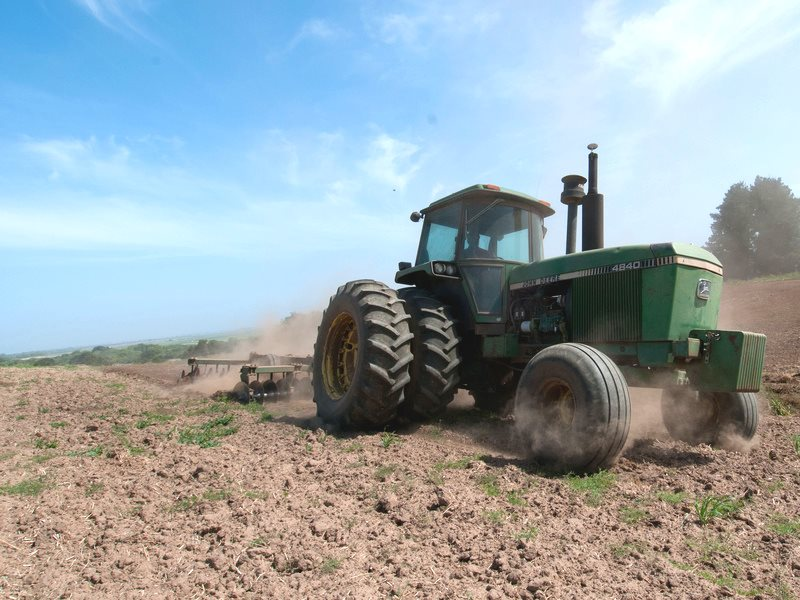 A tractor prepares a field by turning over the cover crop into the soil in preparation for planting at Leafy Greens, in the Salinas Valley, California, June 2011. Cover crops of barley and rye grass hold the topsoil, reducing erosion. Photo: Lance Cheung
