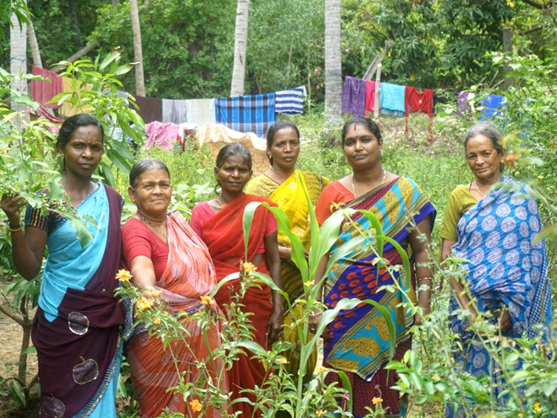 Members of the Womens' Collective of Tamil Nadu in a forest area where they are growing fruits and vegetables. Photo: WhyHunger.