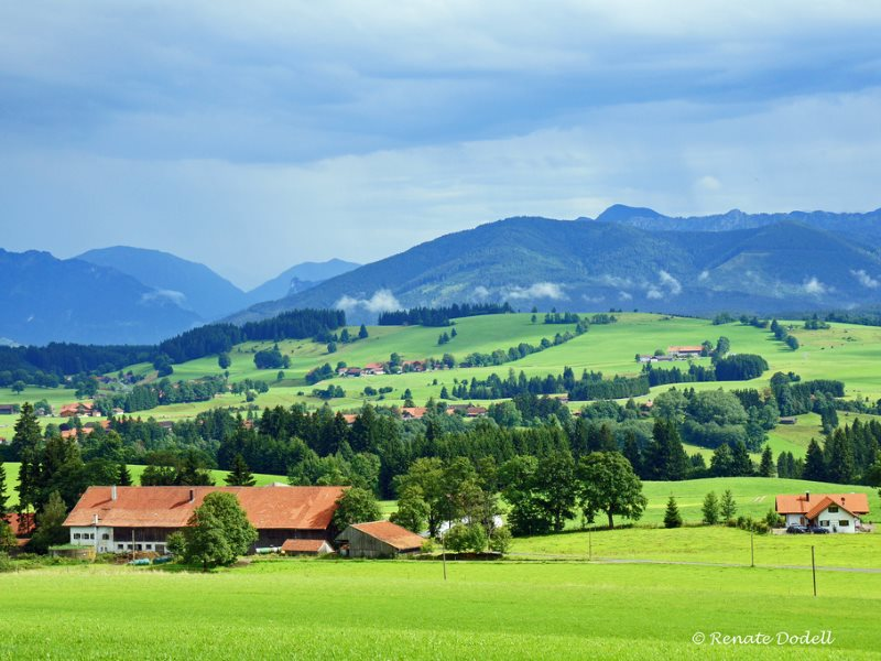 Under TTIP, this landscape of small farms interspersed with trees and woodland in the foothills of the Alps in Bavaria, Germany, might be unable to survive. Photo: Renate Dodell via Flickr (CC BY-ND).