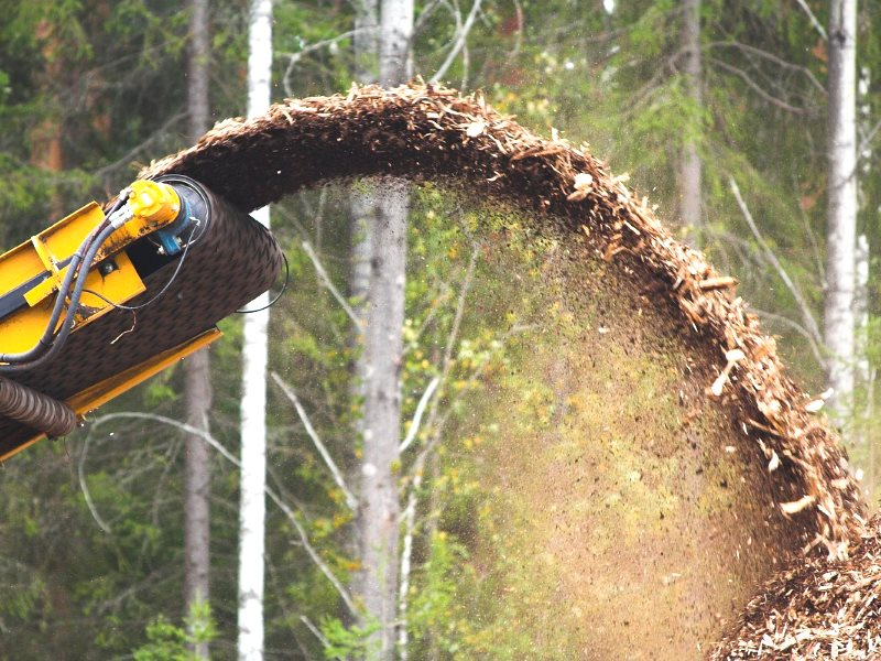 From forest to biomass. Photo: Asea! via Flickr (CC BY-NC-SA)