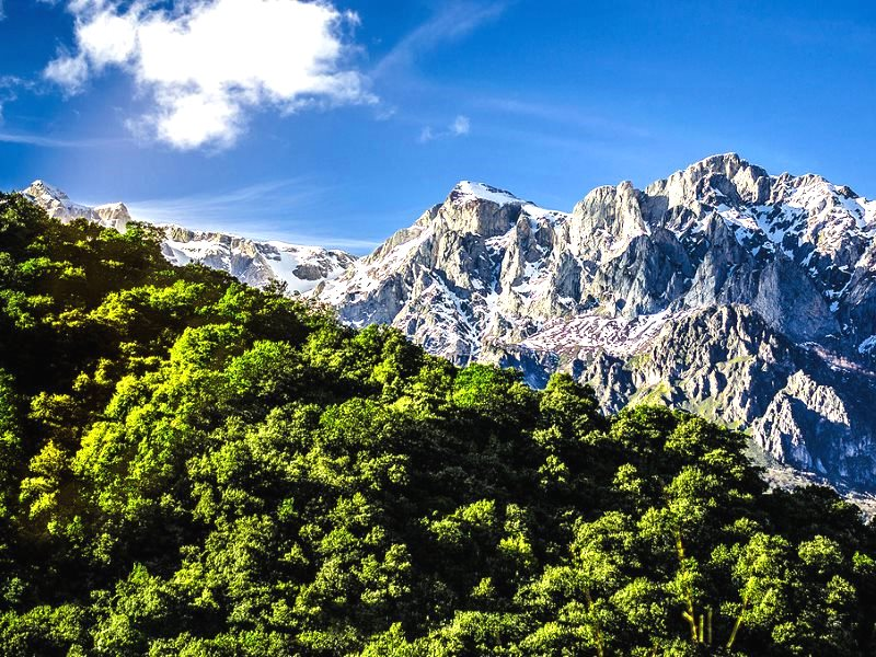 'Diagonal Nature' - Picos de Europa, Asturias, Spain. Photo: Pablo Fernández via Flickr (CC BY-NC-ND).