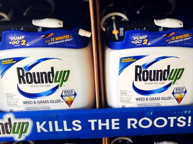 Roundup, Monsanto's top selling herbicide, now up for relicencing for use in EU. With today's postponement of a vote, it could go either way. Photo: Mike Mozart via Flickr (CC BY).