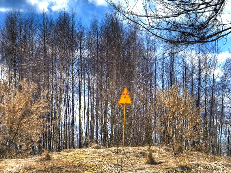Radioactivity warning sign on the hill at the east end of Chernobyl's Red Forest, so called due to the characteristic hue of the pine trees killed by high levels of radiation after the disaster. Photo: Timm Suess via Wikimedia Commons (CC BY-SA).