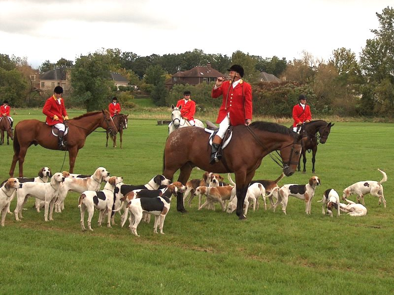 Photo of Fox hunt by TownePost Network via Flickr (CC BY).