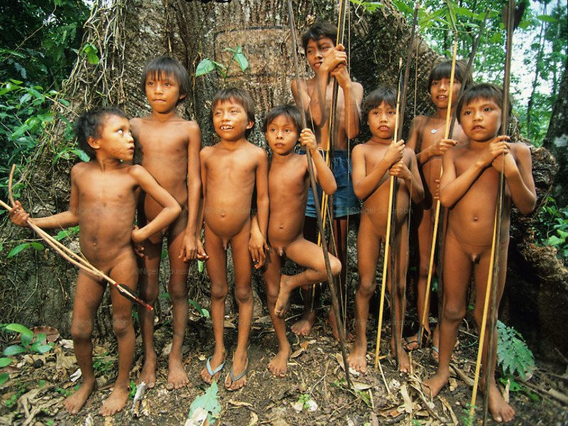 Yanomami children in their forest home - which, with notorious 'Soy King' Bairo Maggi as agriculture minister, is now looking decidedly less secure. Photo: Dung Nguyen via Flickr (CC BY-NC-SA).