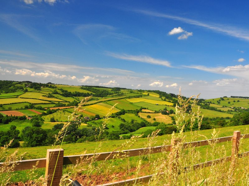 Can the UK's countryside and those who farm it survive the twin assaults of Brexit and a trade deal with the USA? Photo: KayYen via Flickr (CC BY-NC-ND).