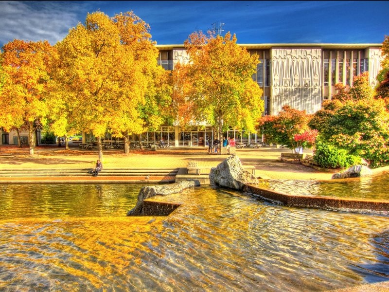Who says nature is not worth valuing in economic measurements? Sadly, most mainstream economists. Photo: Golden Pond on the University of Victoria campus, BC, Canada, by Nick Kenrick via Flickr (CC BY-NC-SA).