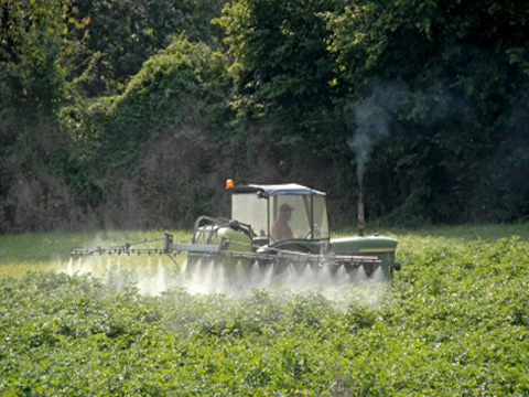 Spraying pesticides by tractor
