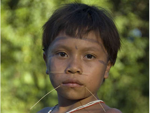 the yanomami essay View this term paper on yanomami the hopi tribe the yanomami are basically peaceful people however a number of them are brutal warriors in majority of the cases.