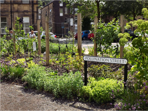 Pollination Street, Todmorden. Photo: Incredible Edible.