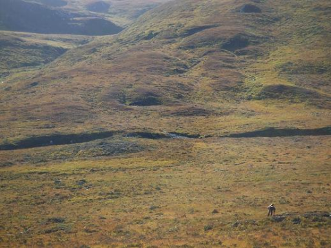 Mapping bracken growth on a bare hillside on TFL's Dundreggan estate. Photo: Philip Mason.