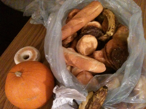 A freegan cornucopia. Photo: Maria Evrenos.