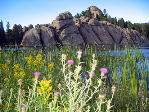 Sylvan Lake, Custer State Park, in the Black Hills of South Dakota. Photo: bruce_fulton via Flickr.com.