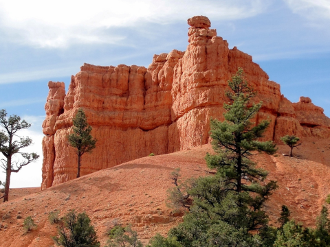Red Canyon in the Dixie National forest, Utah. Photo: Scott Costello via Flickr.com.