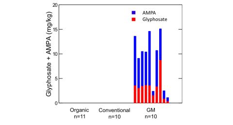 Figure 1: Residues of glyphosate and AMPA in individual soybean samples (n=31). for organic and conventional soybeans, glyphosate residues were below the detection limit.