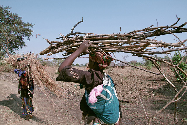 Women in Sudan return to their village after collection firewood. Photo: Margaret W. Nea / Bread for the World via Flickr.com.