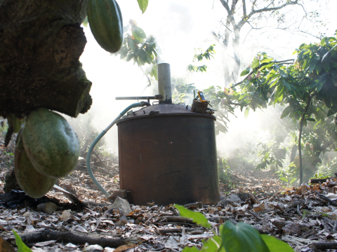 Carbon Gold's SuperChar Mark II kiln onsite in a Belize cacao orchard. Photo: Carbon Gold.