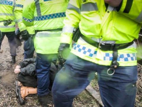 Vanda's arrest by Greater Manchester Police. Photo: Jason Smalley /  Salford Star.