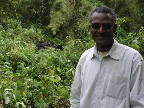 Rutagarama trekking gorillas in Democratic Republic of Congo just after the formal rebels of CNDP ( Coalition National pour la Defense du Peuple) left the park in 2010. He wanted to check that the gorilla group was fit to sustain a tourist visit. Photo: c