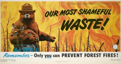 Forest Fire Prevention, 1949, intended for display on a bus or subway car. From University of Illinois archives.
