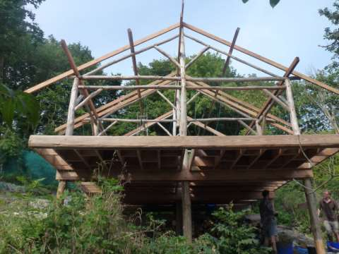 The frame completed. Photo: Moulsecoomb Forest Garden.