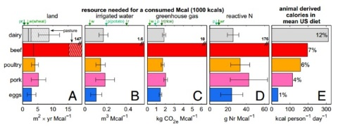 Environmental costs of animal foods in (l to r) land, water, greenhouse gas, and nitrogen, compared to common plant foods such as wheat, rice and potato (green text). Image: Eshel / Shepon / Makov / Milo.