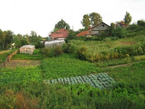A typical small farm in Russia of the kind that provides much of the nation's food. Photo: Vmenkov CC.