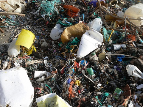 Plastic debris at Whitsands. Photo: Ceri Lewis via Flickr.