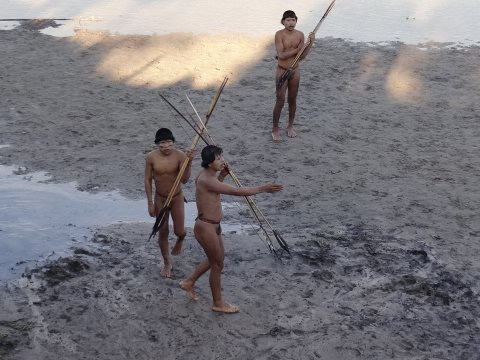 Uncontacted Indians making contact with a settled Ashaninka community near the Brazil-Peru border, June 2014. Photos: © FUNAI.