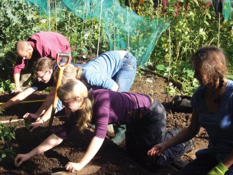 Students sowing winter greens. Photo: Bethan.