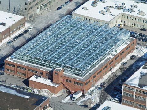 Aerial view of Lufa's rooftop farm in Montreal. Photo: Lufa Farms.