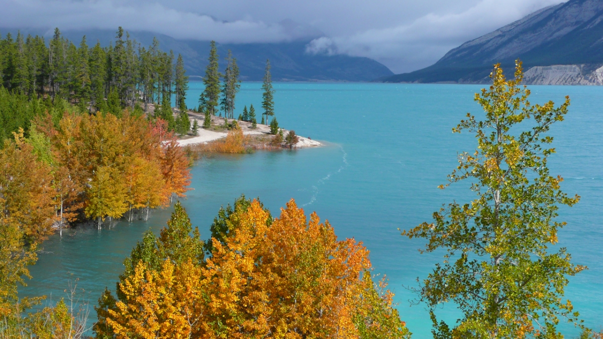 Abraham Lake in fall. 'This image shows the beauty of an area which deserves to be protected in its current state', Alan Ernst said. Photo: Alan Ernst.