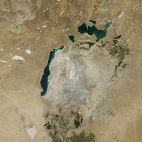 The Aral Sea in August 2014. Photo: NASA.