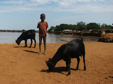 A Nyangatom child stands by the Omo river. Photo: Matthew Newsome.