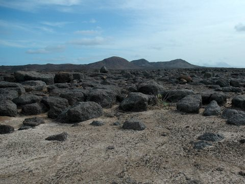 The volcanic landscape of Raso Island, Cabo Verde. Photo: Welbergen / Wikimedia Commons.