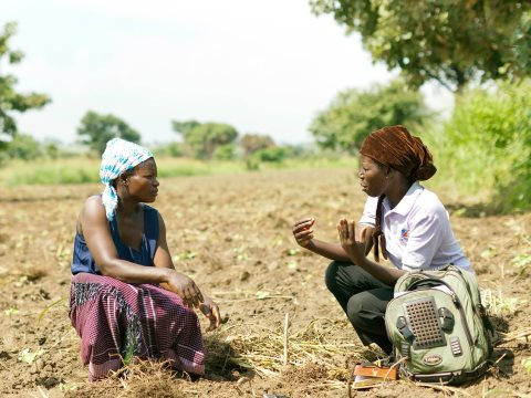 A business advisor for TechnoServe discusses farming techniques with a Ugandan farmer. Technoserve is the NGO receiving the most funds from the Gates Foundation - a US based NGO that develops 'business solutions to poverty'.