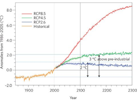 Representative Concentration Pathways (of CO2) representing different climate scenarios. Graph from Nature journal.