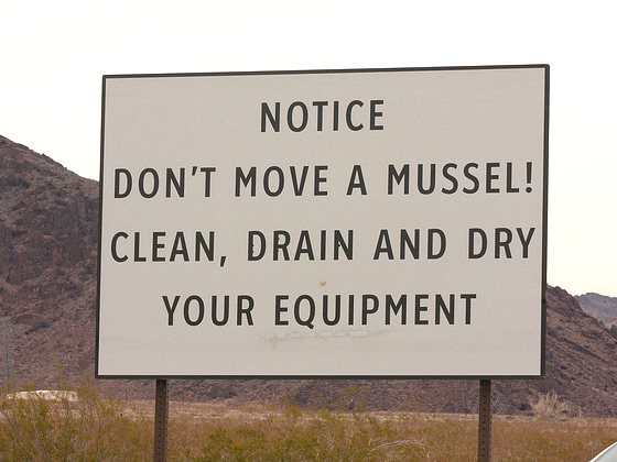 'Don't move a mussel!' - warning notice at Lake Mead, Nevada. Photo: J N Stuart via Flickr (CC BY-NC-ND).