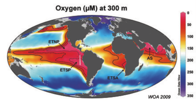 Global map of oxygen levels at 300m, with extremely low oxygen oceanic 'dead zones' marked in red. Image: World Ocean Atlas / Max Planck Institute for Marine Microbiology, author provided.