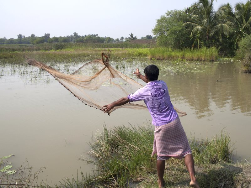 Fishing in the Sundarbans. Photo: Christian Aid.