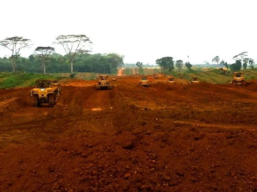 Community land in Sinoe County, including grave sites and sacred forest areas, have been cleared and planted by Golden Veroleum, without the communities' free, prior and informed consent. Golden Veroleum is affiliated to Golden Agri­Resources (GAR), a la